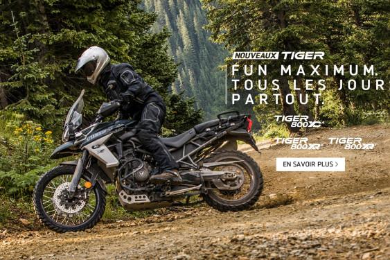 NEW TIGER 800